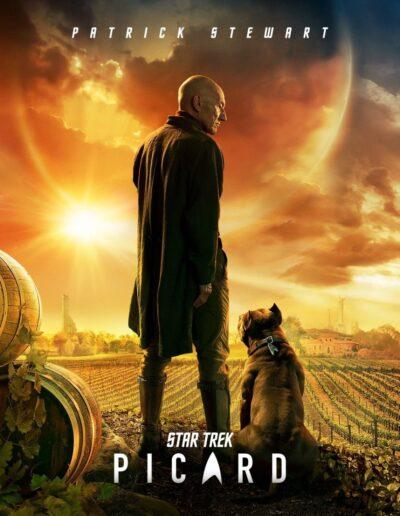 Star Trek Picard (Poster)
